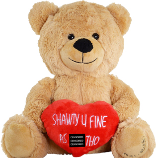 naughty-personalised-teddy-bears