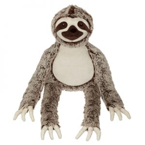 Buddy long arm sloth